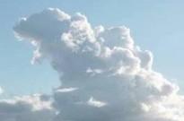 中日美网友晒拍到的哥斯拉形状的云,上海那张太搞笑了