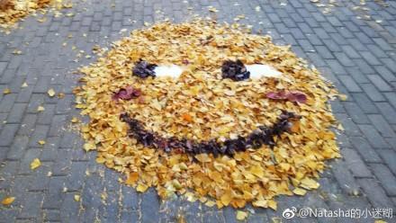 日本网友用落叶堆了个皮卡丘,国内网友吐槽:我们学校还有滑稽呢